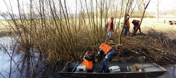 Werk verzetten op een eilandje in Kralingse Bos.